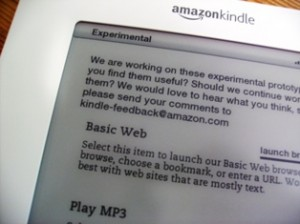 Kindle Web Browser